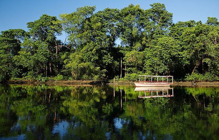 Parque Ecológico do Rio Cocó em Fortaleza